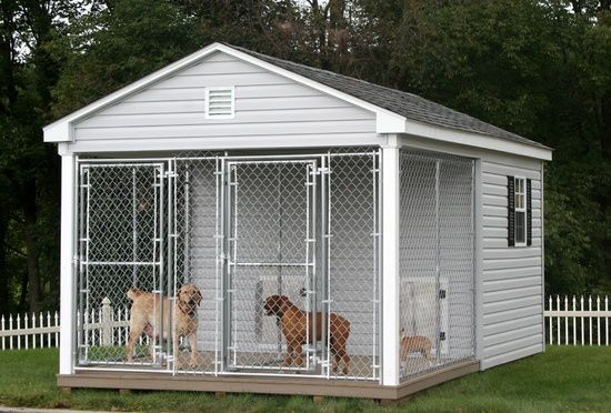 For Those Days When The Doogs Insist On Being Outside 24 7 10x16 Dog Kennel And Run For Large Br Dog Kennel And Run Dog Kennel Outdoor Dog Kennels For Sale