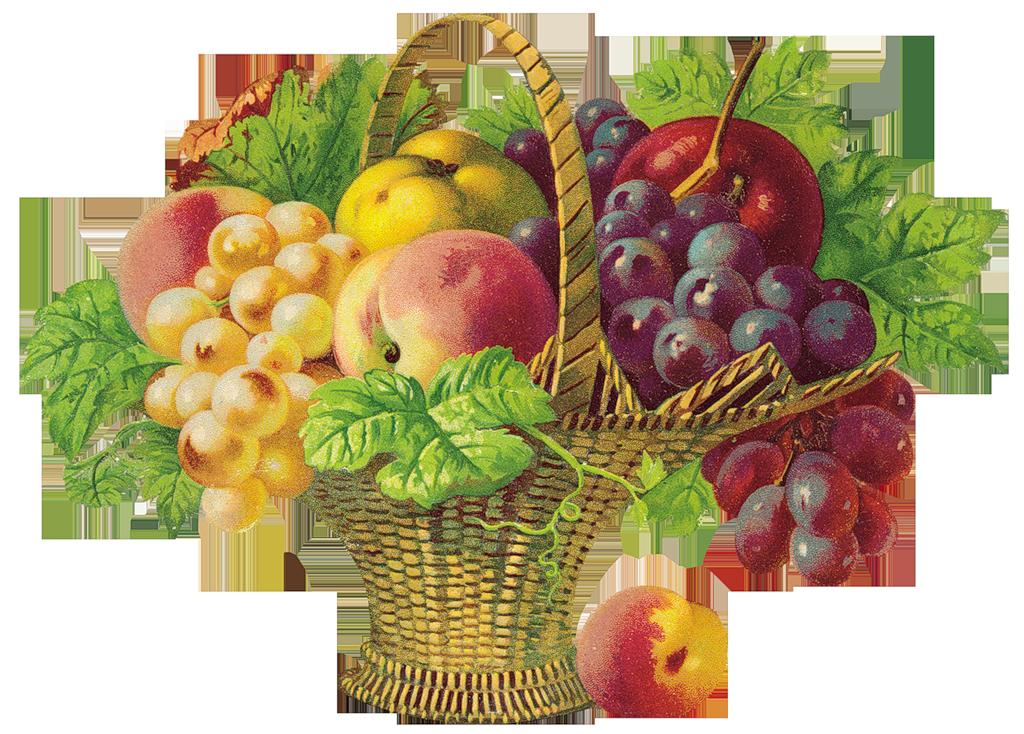 Картинки анимации с фруктами