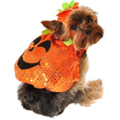 Sequin Pumpkin Dog Costume Party City Pet Halloween Costumes