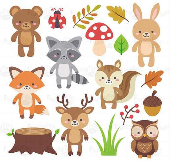 Woodland Animals Clipart Forest Animal Clip Art Wild Cute Colorful Fox Deer Squirrel Raccoon Rabbit Owl Bear Ladybug Graphic Png Download Animal Clipart Woodland Animals Forest Animals
