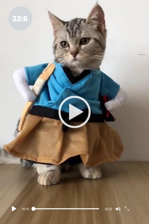 Wooowww Most Beautiful Video Must Watch It Funny Gif Funny Gifs Fails Funny Grumpy Cat Memes