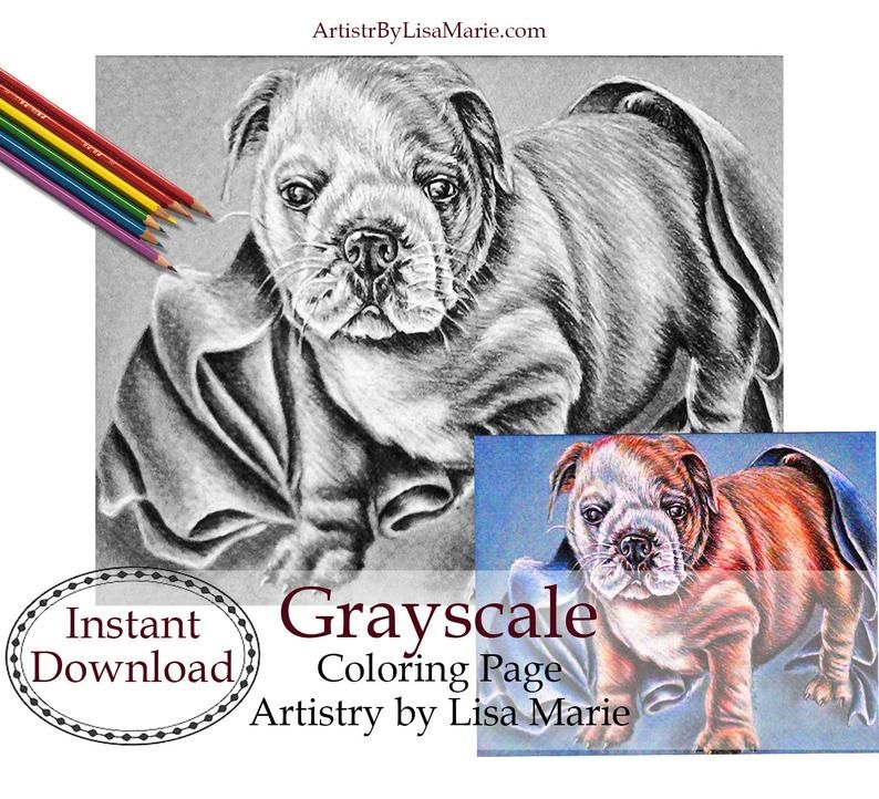 Indoor Home Activities Bulldog Printable Coloring Book Etsy Coloring Books Coloring Pages Mom Coloring Pages