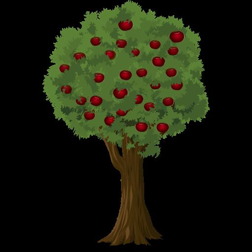 Obstbaume Obstbaum Englisch Obst Bio Obstbaume Gemusepflanze