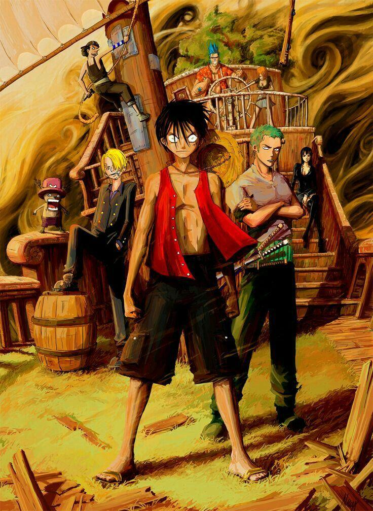 Luffy Zoro Sanji Chopper Nami Robin Franky Usopp