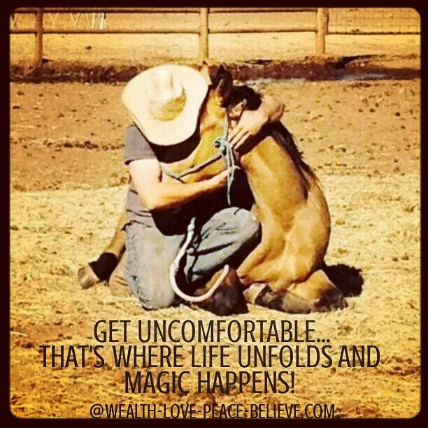 Get uncomfortable... That's where life unfolds and magic happens! Your 'Comfort Zone' is where you just Exist! Freedom results when you challenge yourself to get out of your comfort zone and experience the Magic that follows!  #freedom #magic #getuncomfortable #gameoflife #knowforyourself #life #horse #buckskin #AstroOak #myawesomebrother www.your-higher-self.com