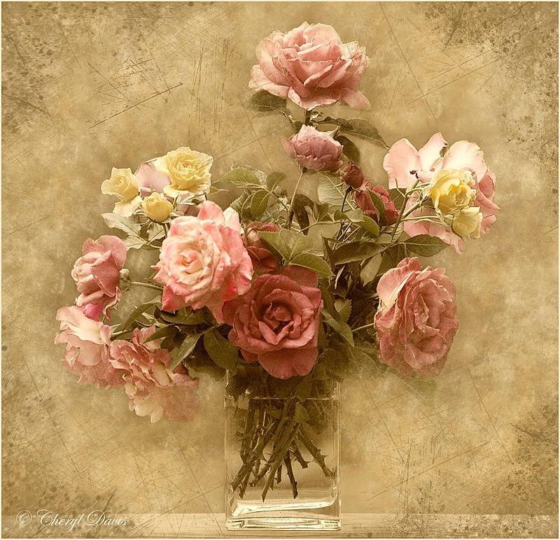 настолько поздравления с днем рождения цветы картинки винтаж ранатры палочковидной