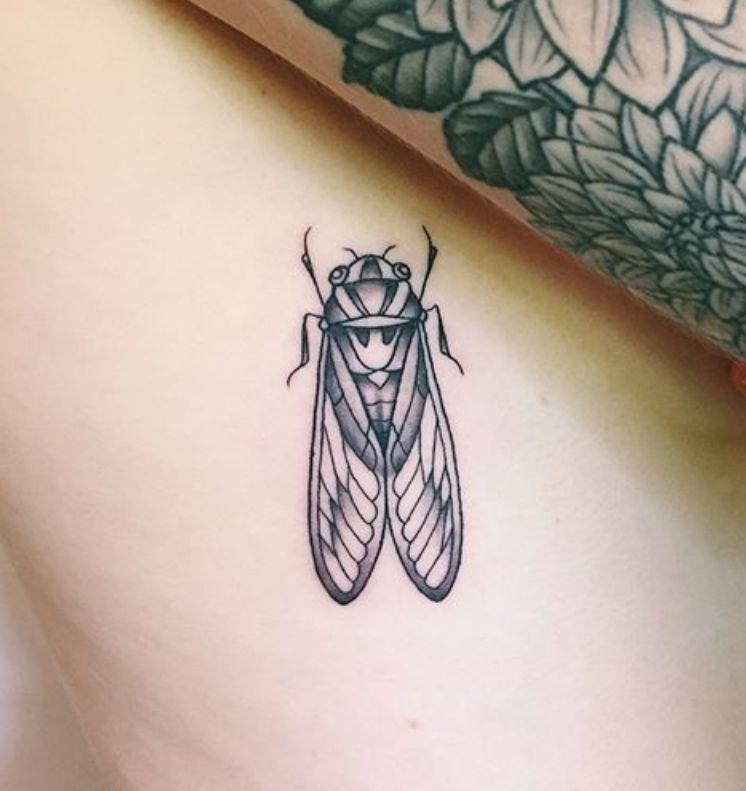 cicada tattoo traditional style tattoo ideas pinterest cicada tattoo tattoo traditional. Black Bedroom Furniture Sets. Home Design Ideas