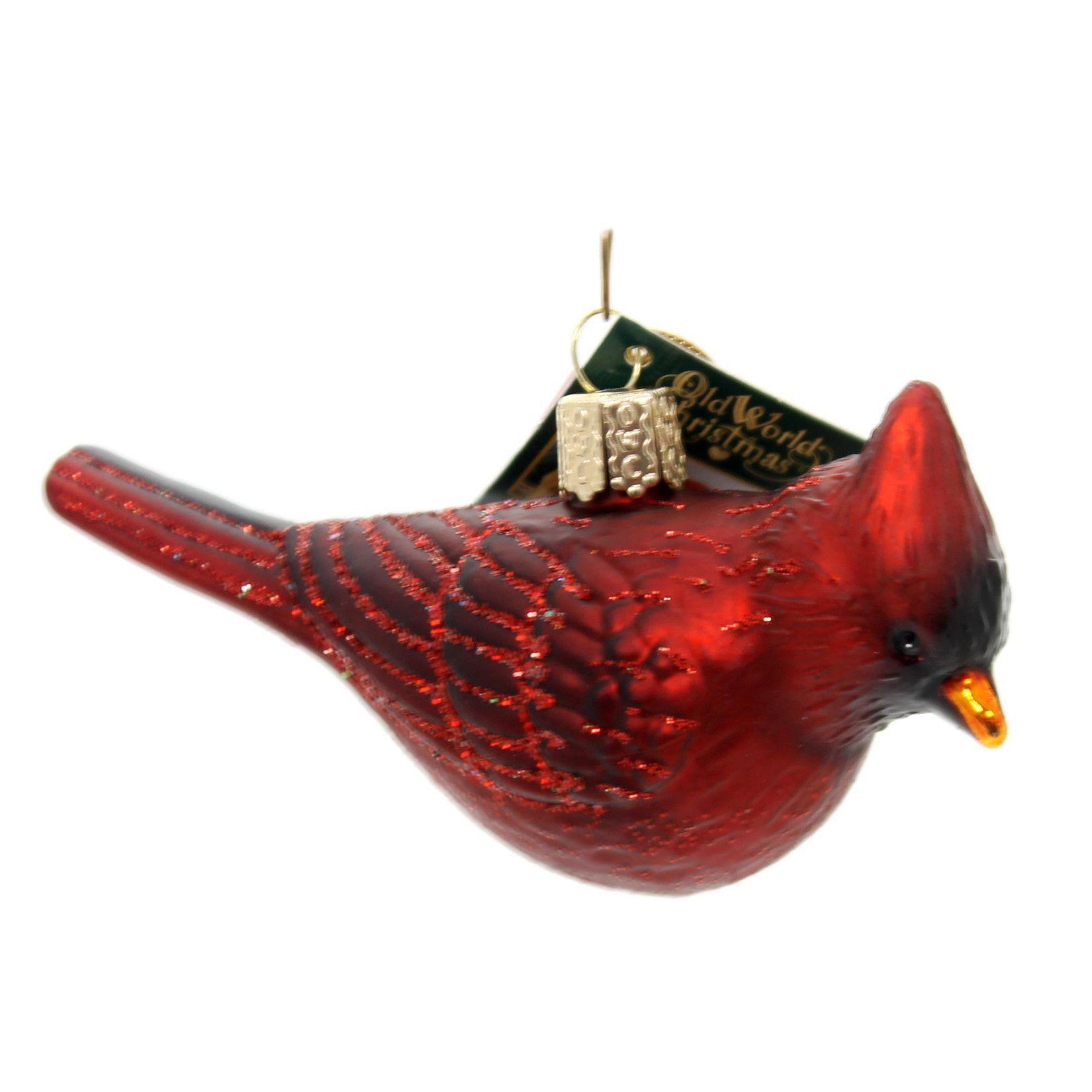 Old World Christmas Northern Cardinal Glass Ornament   Northern ...
