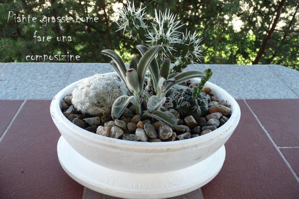 creare composizioni piante grasse con materiale di recupero. idee di Angie pe...