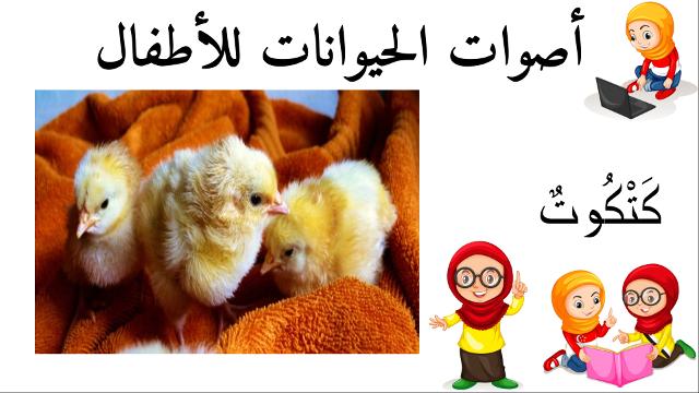كتكوت أسماء الحيوانات للأطفال وأصواتها Hamster Animals Bird