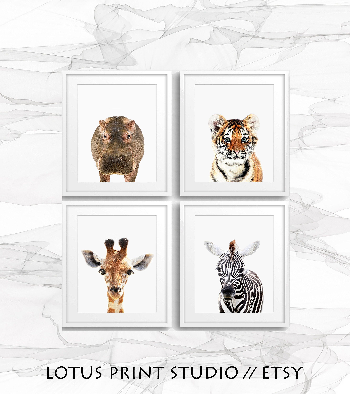 Set Of 4 Safari Animal Prints Nursery Baby Animal Posters Wall Decor For Kids Baby Room Prints Printable Animals Digital Art 656 Safari Animal Prints Safari Animal Prints Nursery Safari Wall Art