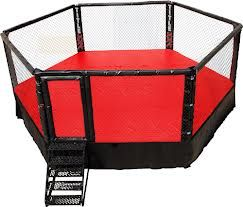 Boxing Cage Google Search Champions Mma Wall Exterior