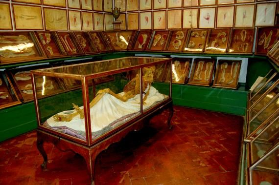 La Specola: Largest wax anatomical collection anywhere in the world!