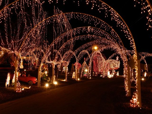 Charming Christmas Lights Raleigh Nc F51 In Modern Image Selection ...