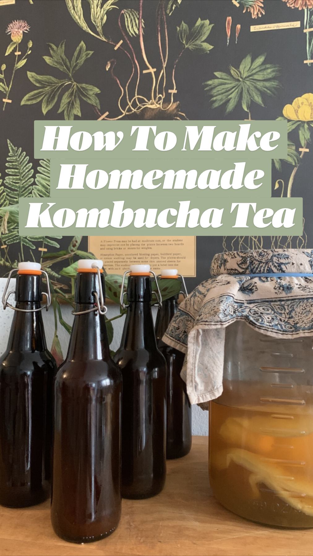 How To Make Homemade Kombucha Tea