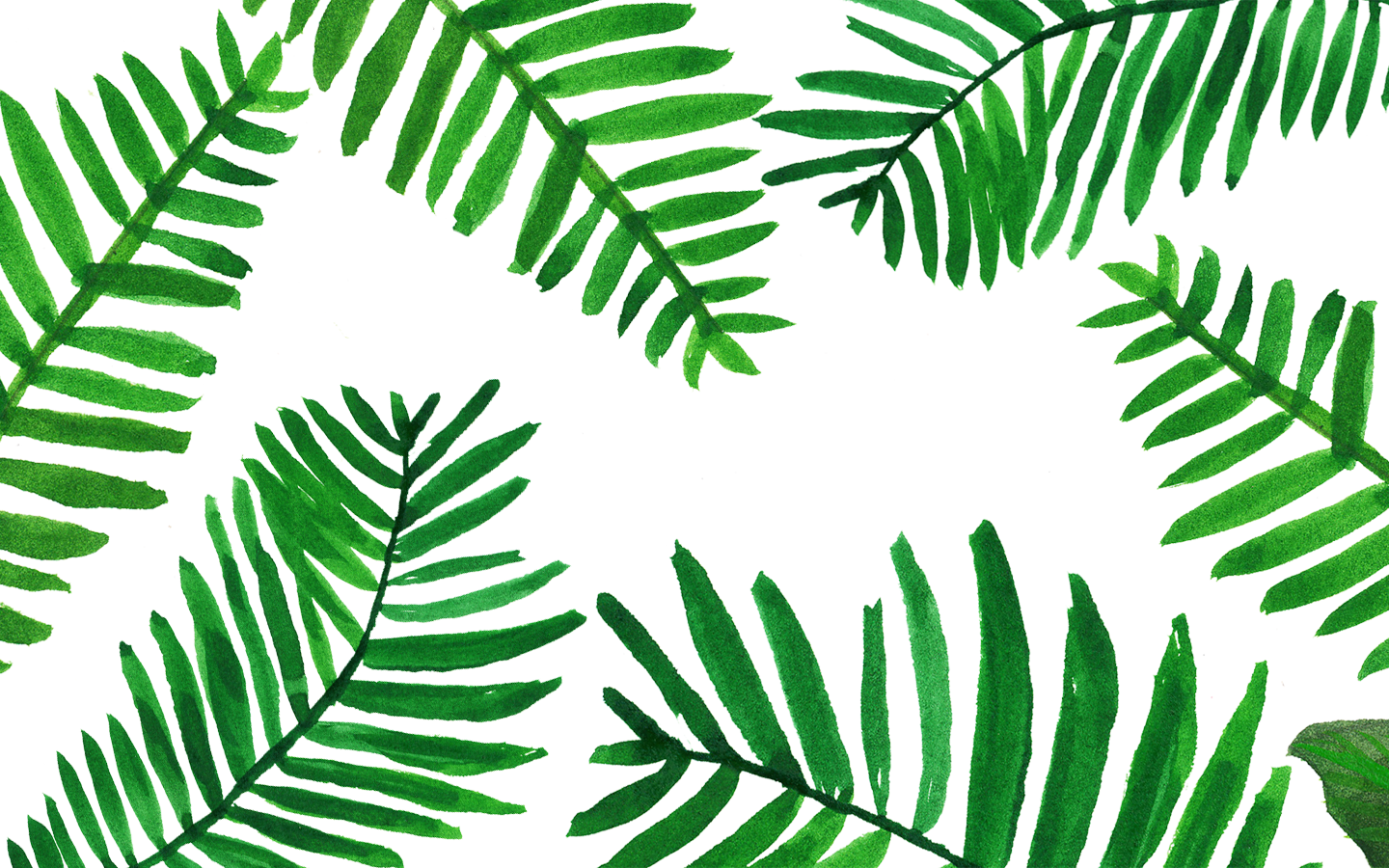 Palm Leaves Wallpaper From Www.piximitmilch.at