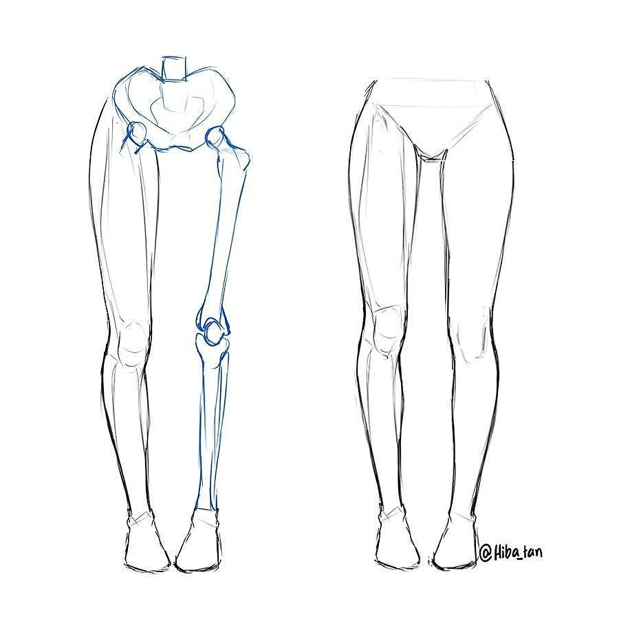I just posted a small leg anatomy tutorial on @hibayume for ...