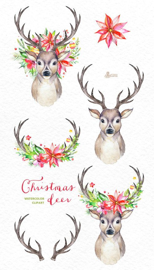 christmas deer watercolor deers antlers flowers hand. Black Bedroom Furniture Sets. Home Design Ideas