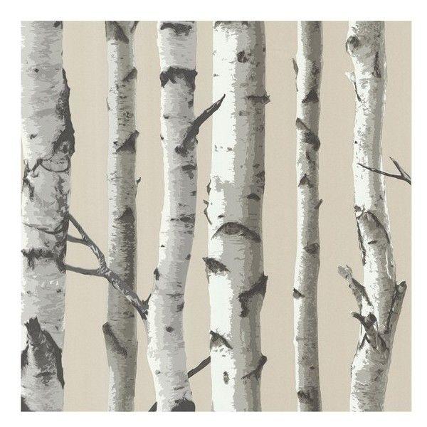 Wallpops Birch Tree Prepasted Wallpaper 835 500 Idr Liked