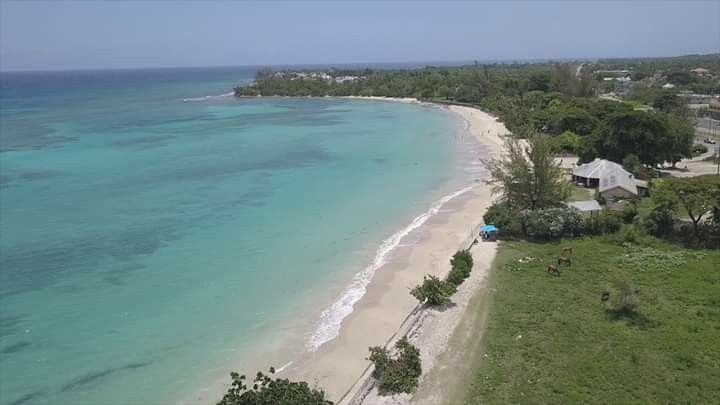 Comfortable surroundings - Picture of Cardiff Hotel & Spa ...  |Cardiff Runaway Bay Jamaica