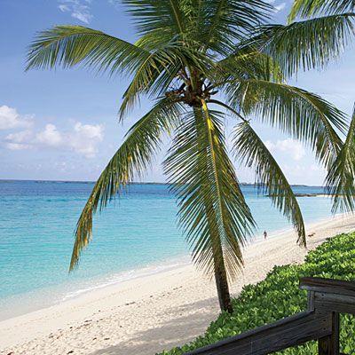 Budget-Friendly Caribbean Getaways | Nassau, Bahamas