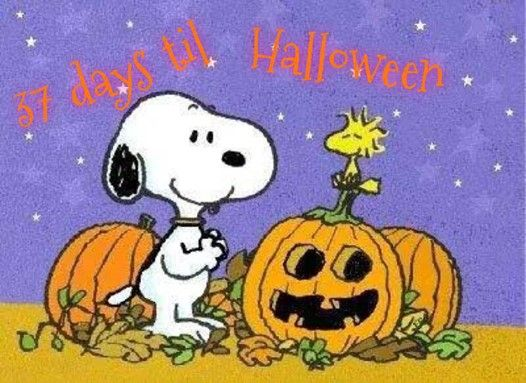 Pin Lisaajalta Sonja Perho Taulussa I Love Halloween Sarjakuva Ja Halloween