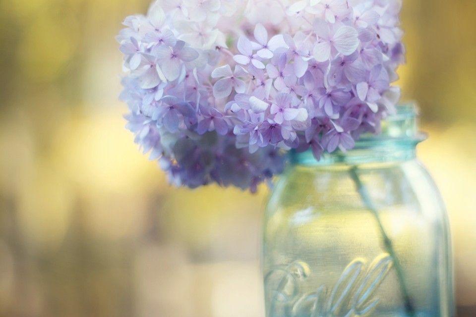 960g 960640 art stuff pinterest flower photography flower photography hydrangea wall art bontanical print lavender purple yellow aqua flower in a jar photo hydrangeas mightylinksfo