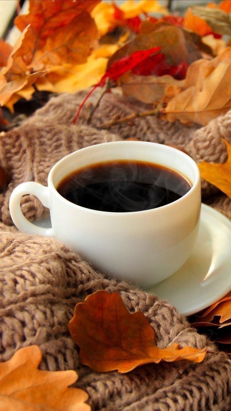 Pin By Pkahn Brown On فنجان قهوتي Autumn Coffee Good Morning Coffee Coffee Cafe