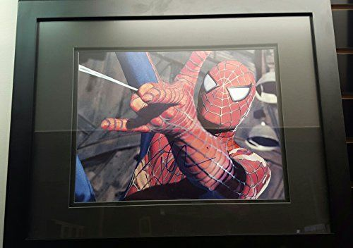 Spiderman Tobey Maguire autographed 11x14 photo, framed, COA null