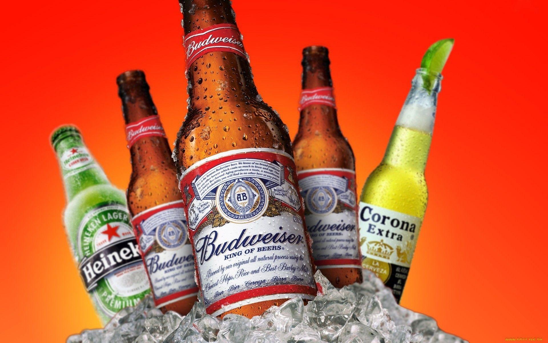 Tbudweiser beer budweiser heineken corona extra drops ice beer bottles my wallpapers ice - Budweiser beer pictures ...