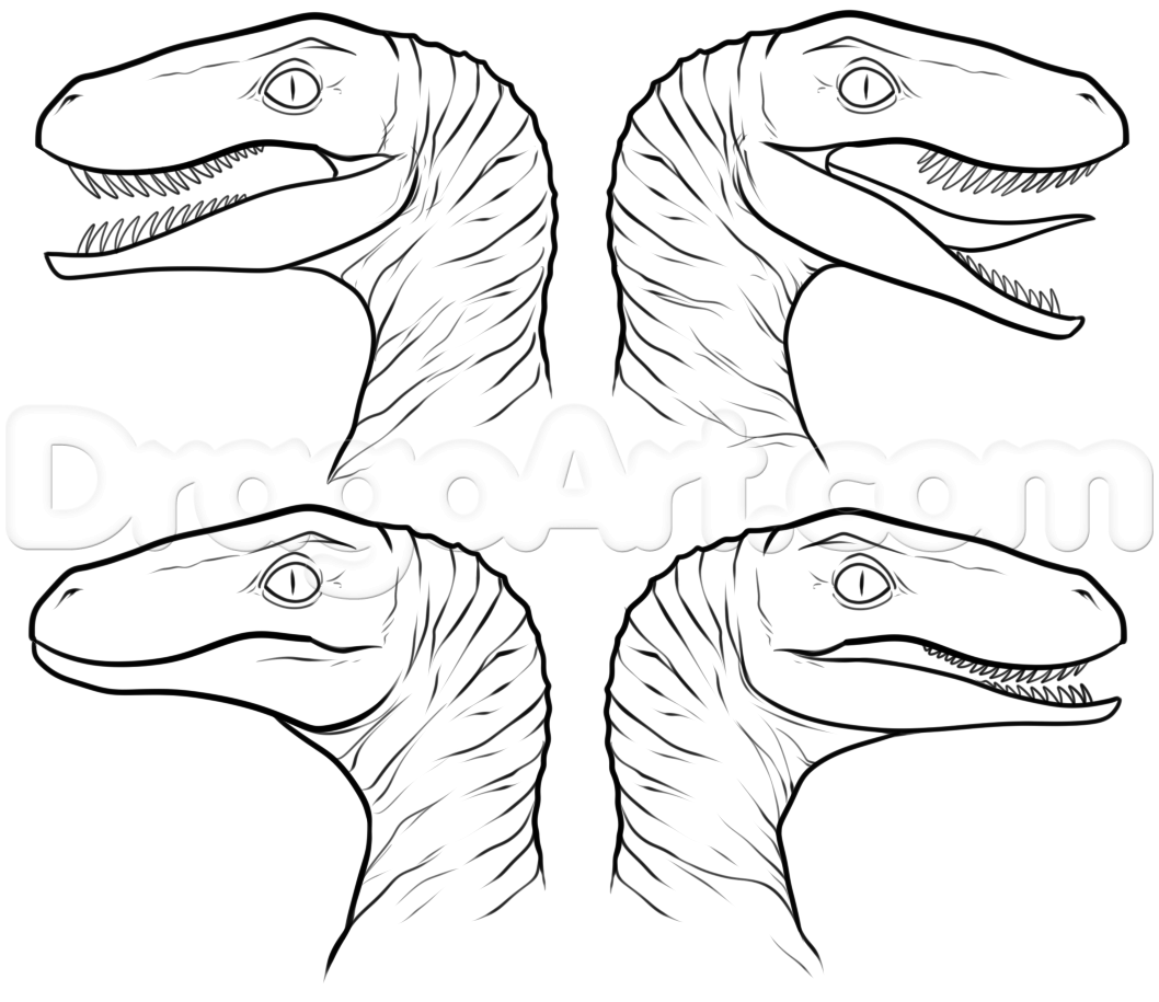 How To Draw The Raptor Squad From Jurassic World Step 6
