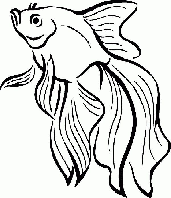 Sea Creature Coloring Pages Goldfish Fish Coloring Page Fish Drawings Coloring Pages