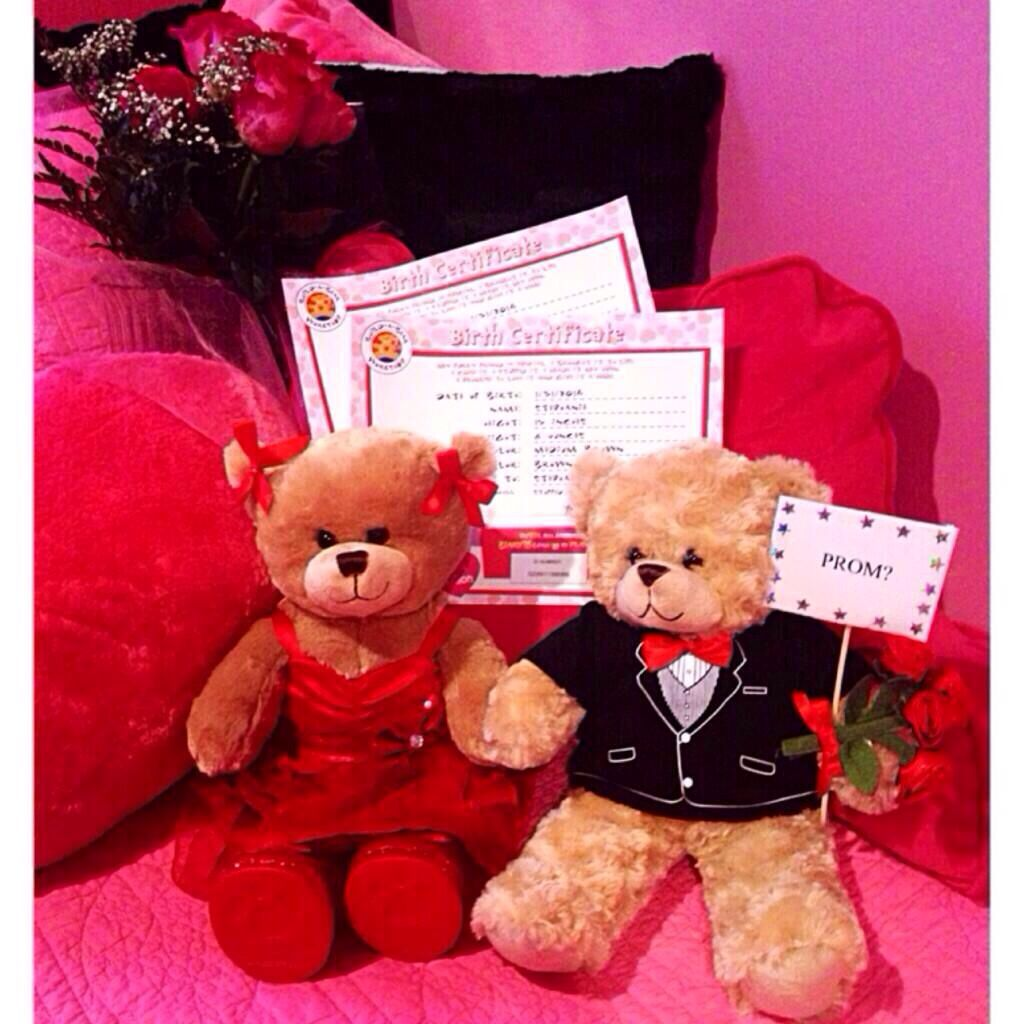 Proposal Ideas Using Pets: Build A Bear Prom Proposal! Cute Idea :) This Is Totally