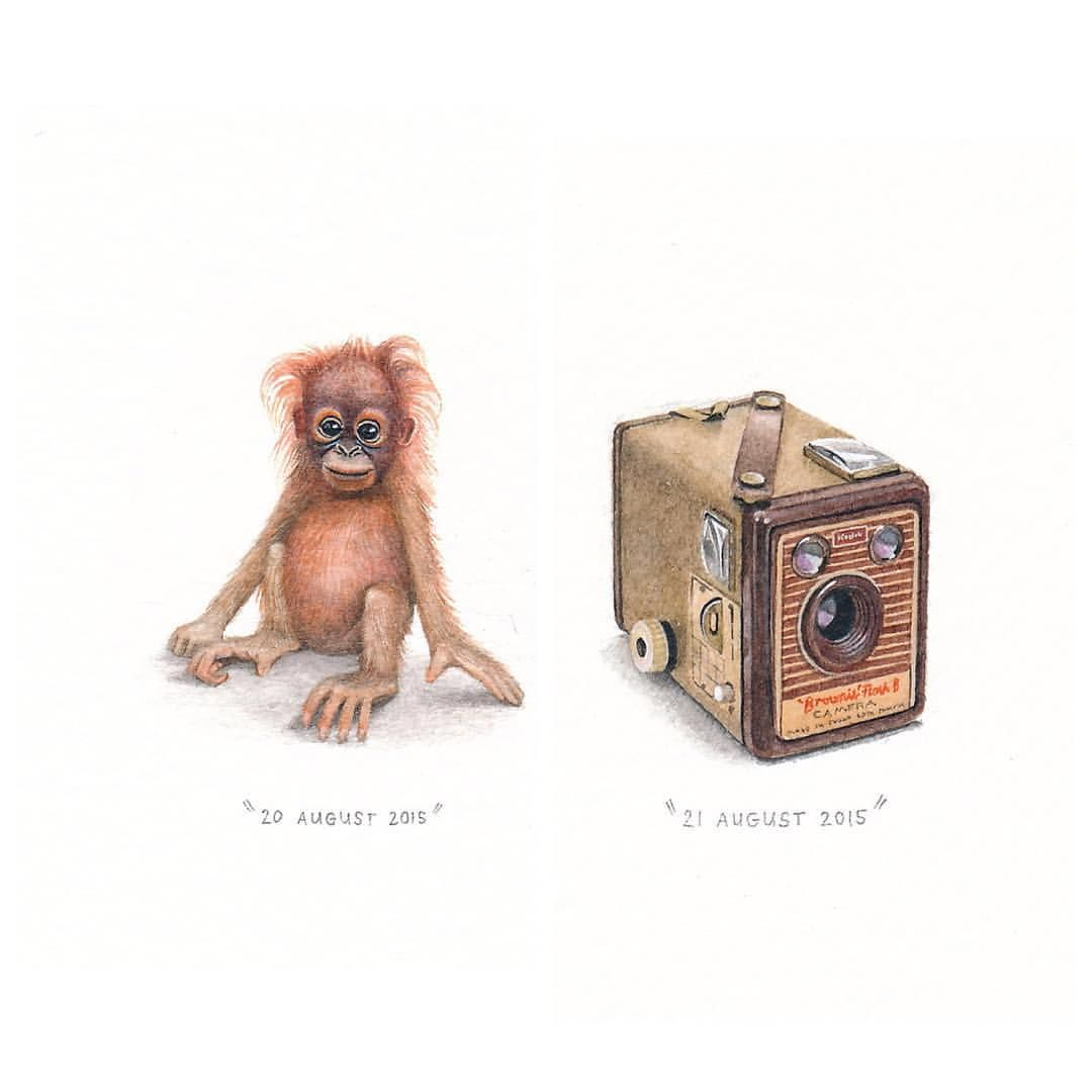 Less than an hour left to bid on the Kodak Brownie painting (auction ends at 3PM GMT+2) and  less than 2 hours to bid on the orangutan painting (ends at 4PM GMT+2). If you'd still like to bid on these, please comment with your bid on the auction posts (these images posted a week ago).    #potluck100pfa #miniature #paintings #auction #kodakbrownie #orangutan (at Buchanan Square, Woodstock)