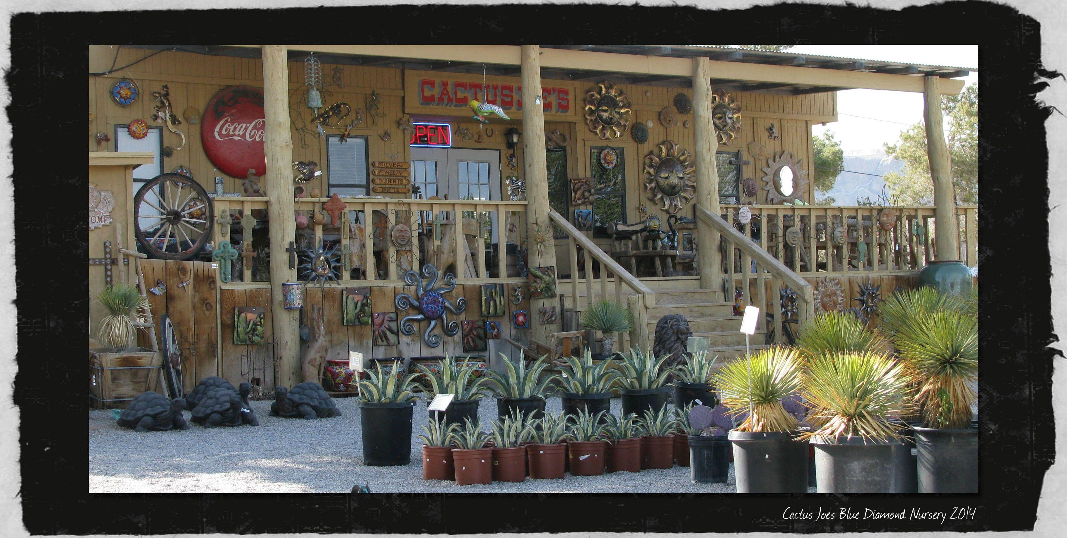 Gift At Cactus Joe S Blue Diamond Nursery In Las Vegas