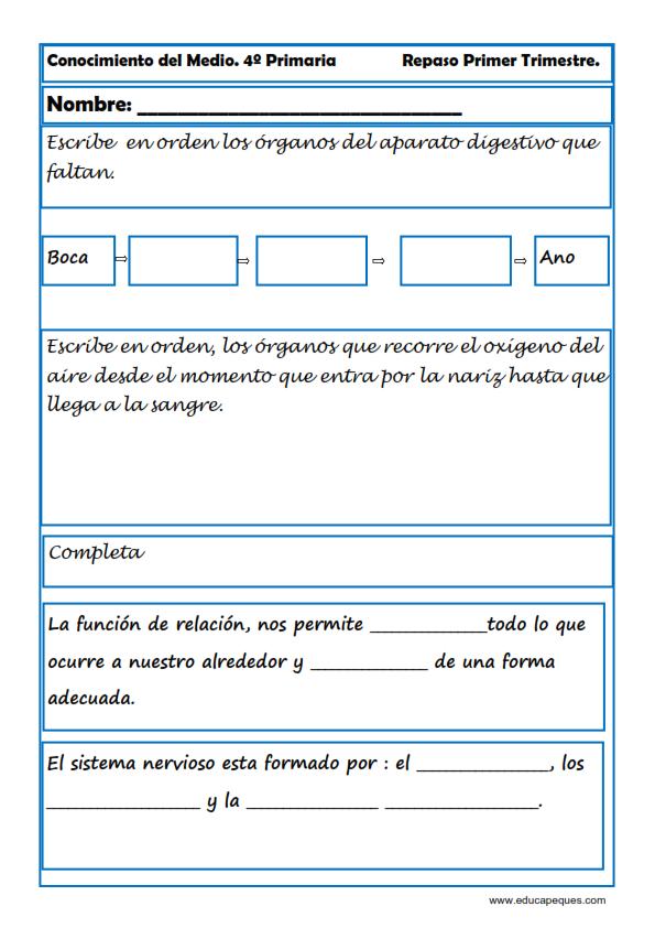 Recursos para el aula: Fichas Conocimiento del Medio Cuarto de ...