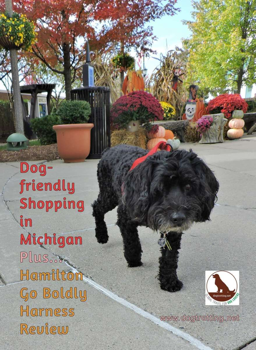 Travel To Dog Friendly Michigan Malls And Go Boldly Harness Review