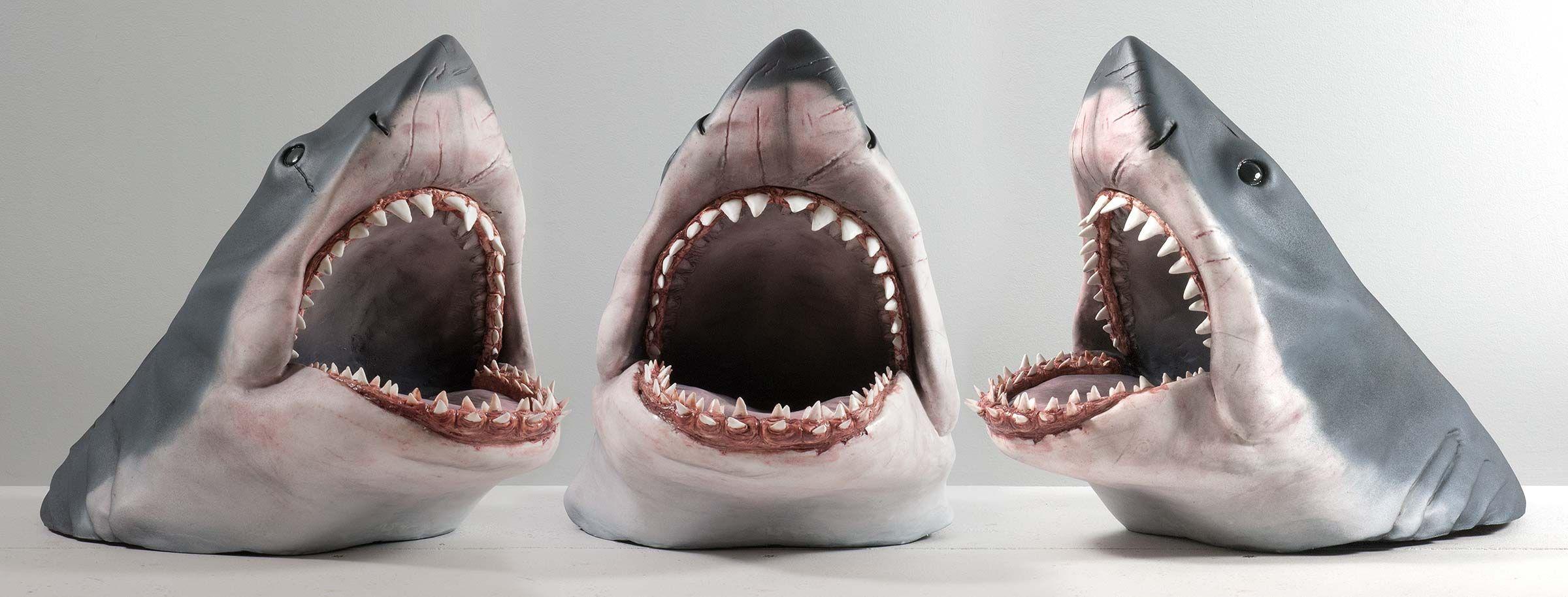Смешные картинки про челюсть, сумерками надписями