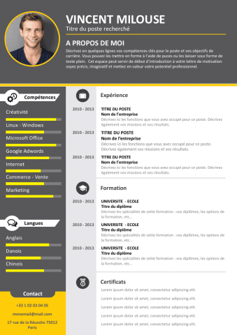 CV Professionnel gratuit … | Pinteres…