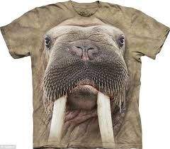 3D Printed T-Shirts Animals of Forest On Green Eps Short Sleeve Tops Tees