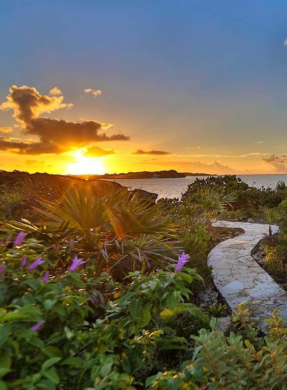 Walk into the sunset at Villa Alamandra.