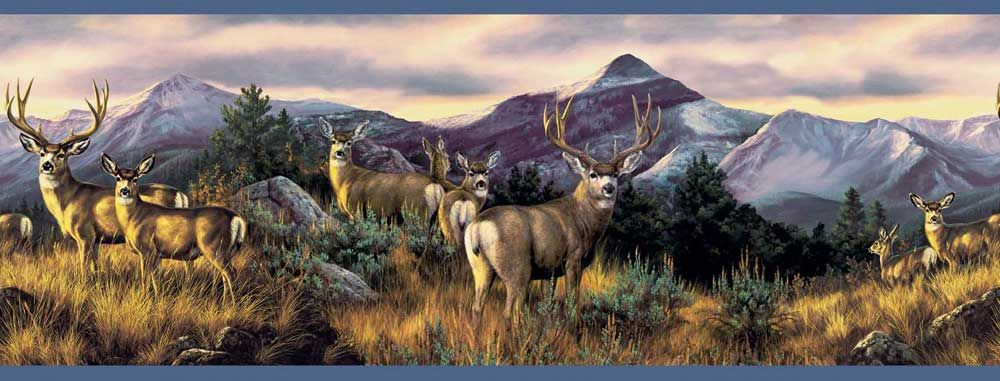 Mule Deer Wallpaper Border Murals and Borders