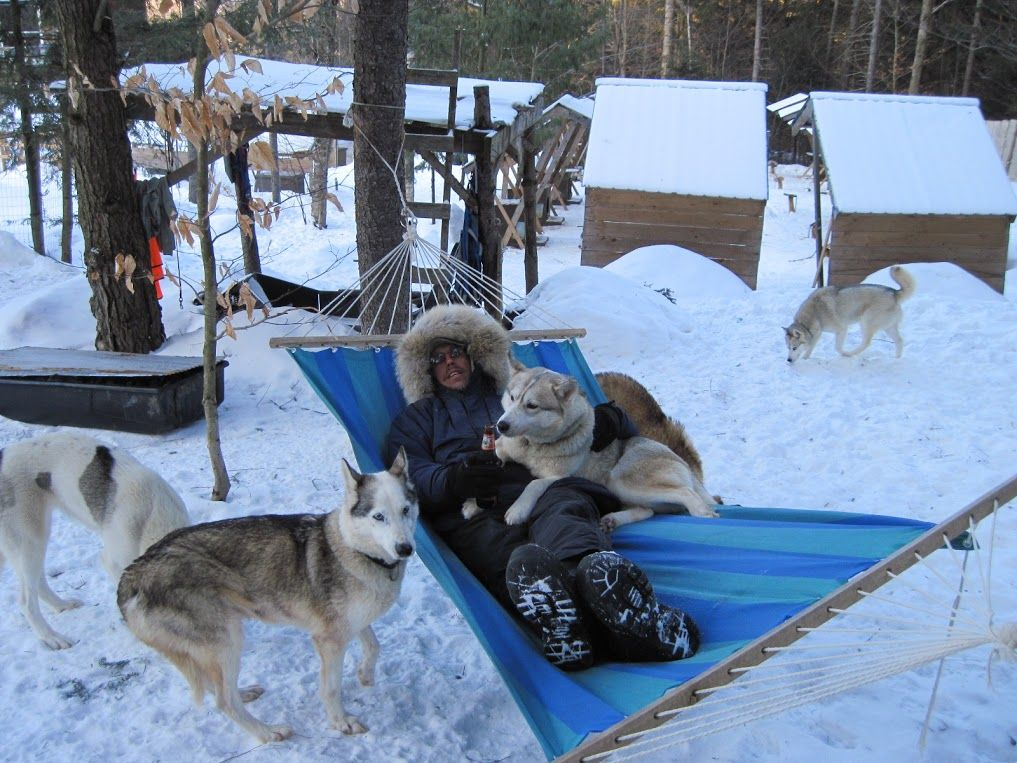 Lounging In The Hammock At Peace Pups Dogsledding Lake Elmore