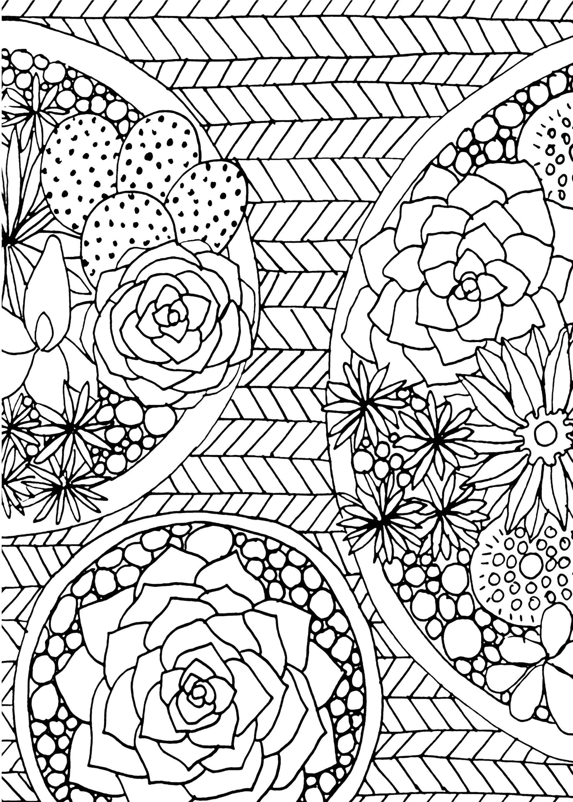 Amazon Succulents Portable Adult Coloring Book 31
