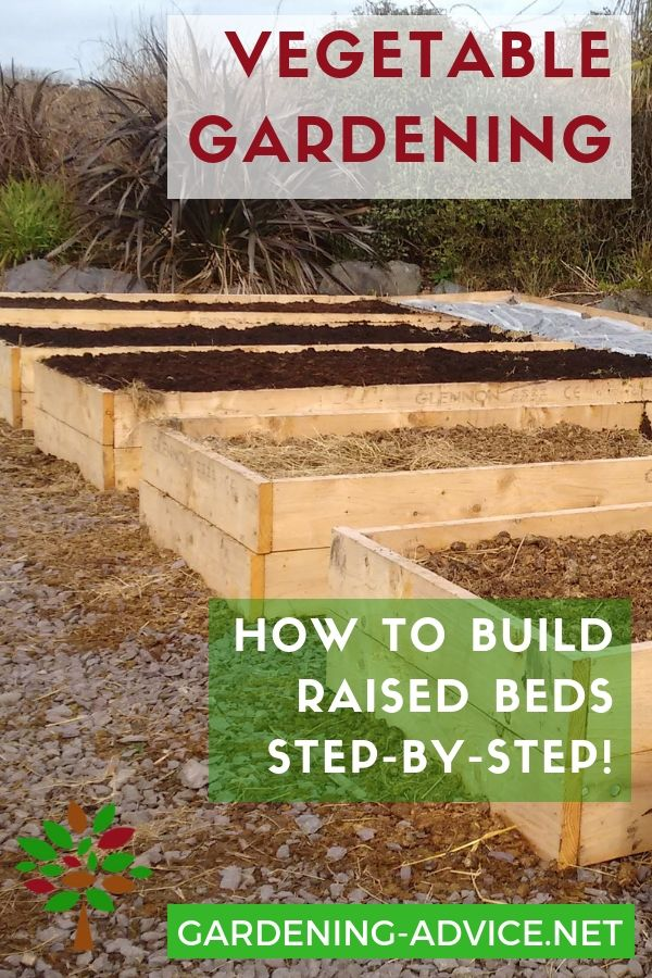 Easy To Build Raised Bed Garden Plans   (TAF) Homestead ... Raised Garden Plan Homesteaders on raised herb box wooden design, camping plans, raised planters, raised gardens for handicapped, raised fish ponds designs, raised gardens for seniors, raised container gardening, raised bed lasagna gardening, yoga plans,
