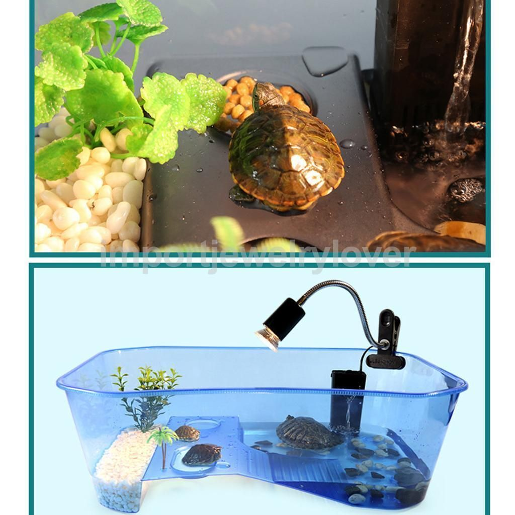 reptile habitat terrarium tank feeding box for terrapin
