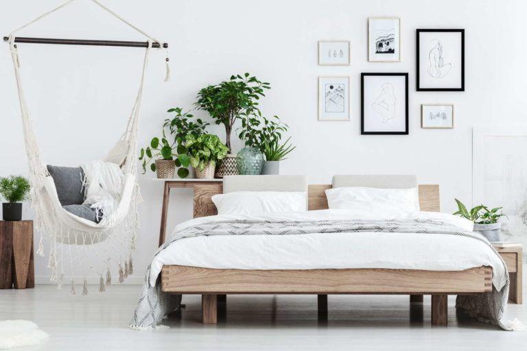Pflanzen im Schlafzimmer: Vorteile, Nachteile und geeignete Arten #pflanzenimsch... #pflanzenimschlafzimmer