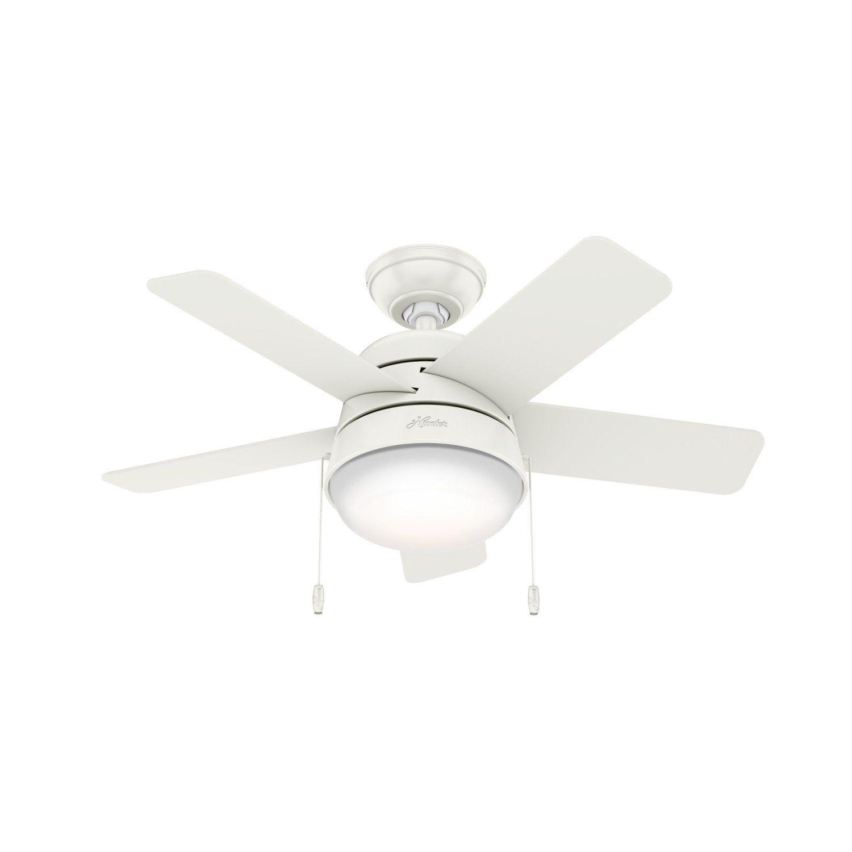 Tarrant With Led Light 36 Inch White Ceiling Fan Fan Light Ceiling Fan