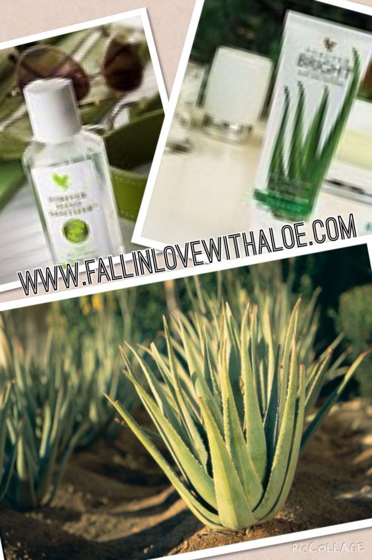 Aloe Vera And Propolis Toothgel And Aloe Vera With Honey Hand