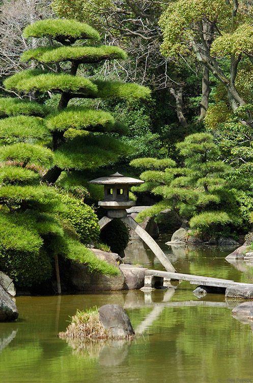 jardin japonais avec un arbre nuage magnifique relativement reposant jardin zen. Black Bedroom Furniture Sets. Home Design Ideas